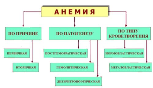 Все, что вы должны знать об анемии