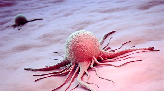 Почему повышается уровень амилазы в крови?