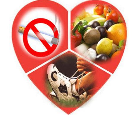 Все о профилактике серьезной патологии сердца – инфаркте миокарда