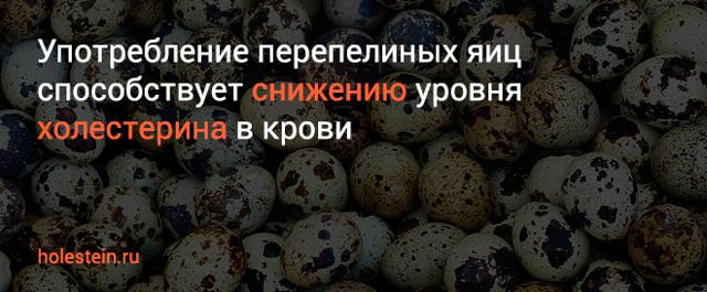 Мифы и факты о влиянии перепелиных яиц на холестерин в крови