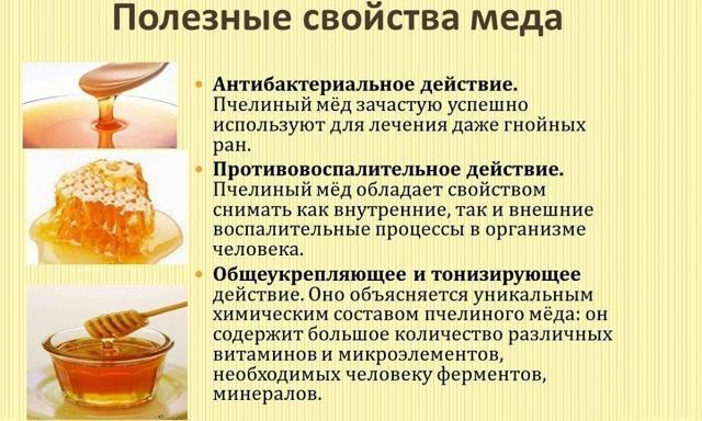 Мёд для лечения геморроя: показания и противопоказания, народные рецепты и правила терапии, побочные реакции и меры предосторожности, польза продукта