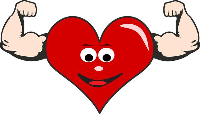 Правила укрепления и поддержания нормальной работы сердца