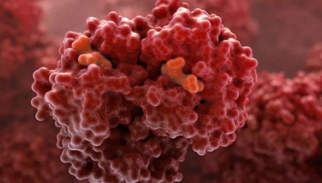 Эритроцитоз: причины и способы лечения