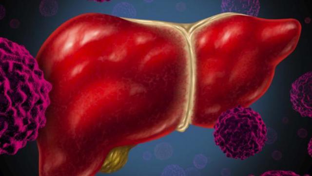 О чем говорит уровень билирубина в анализе крови?