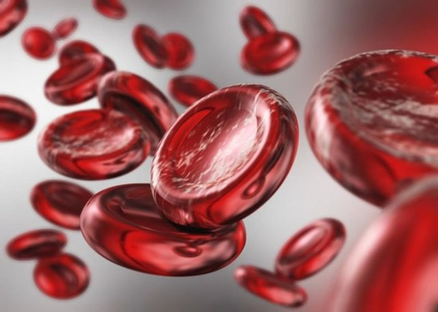 Малокровие — причины, симптомы, лечение